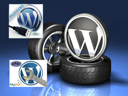 WordPress Services - Setup and Configuration - Custom Pluging / Add on Development